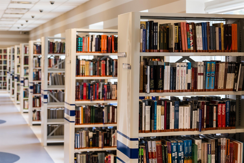 bookcase-books-bookshelves-256541 (1)